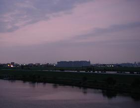 Photo_256